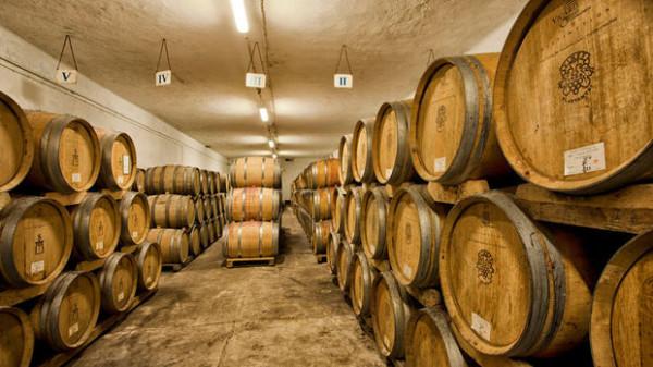 Vinex Slavyantsi Winery